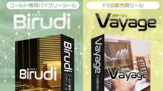 【投資】バイナリーツールBirudi(ビルディ)とFX自動売買システムVayage(ボヤージュ)は詐欺?評判と口コミ